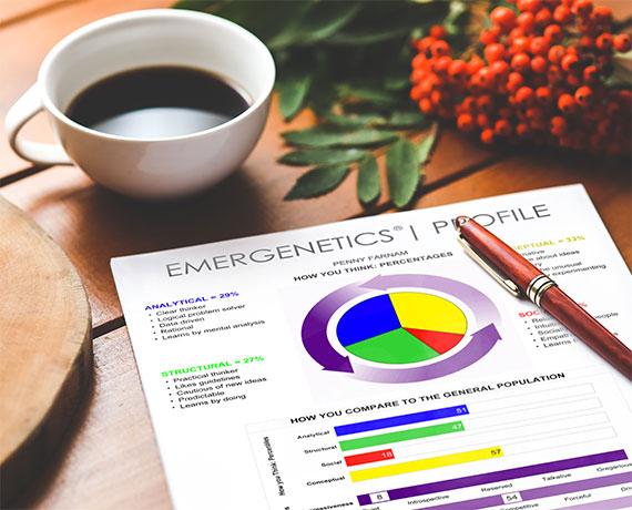 Image of Emergenetics Profile